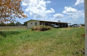 Neils Plantation, St. Michael, Barbados