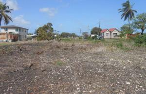 Marchfield Land, St. Philip, Barbados