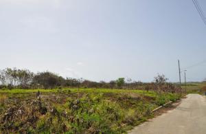 Greenpoint, Society Plantation, St. John, Barbados