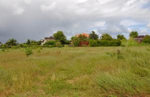 Royal Westmoreland, Palm Ridge 4, 6 & 8, St. James, Barbados