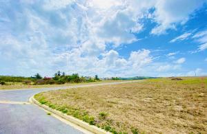 Vineyard Land Development, St. Philip, Barbados